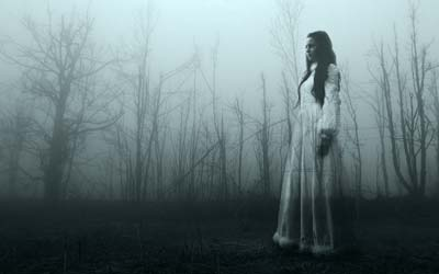 Strange dreams: appeared in the dream to guide them to her missing body!