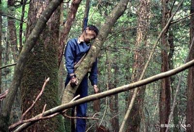 غابة اوكيغاهارا aok_bg005.jpg