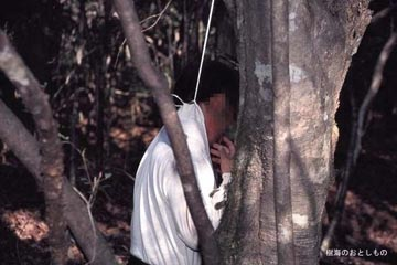 غابة اوكيغاهارا aok_bg006.jpg