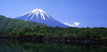 غابة اوكيغاهارا aok_bg010.jpg