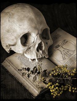 هل المسحور يعرف من سحره إقرأ هل المسحور يعرف من سحره وكيف تعرف من سحرك