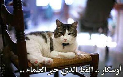 أوسكار .. القط الذي حير العلماء