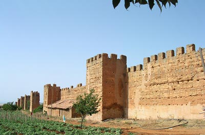 القسم الثالث: دول مغربية تسقط Algeria_bg004