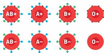 لماذا نمتلك فصائل دم مختلفة؟!