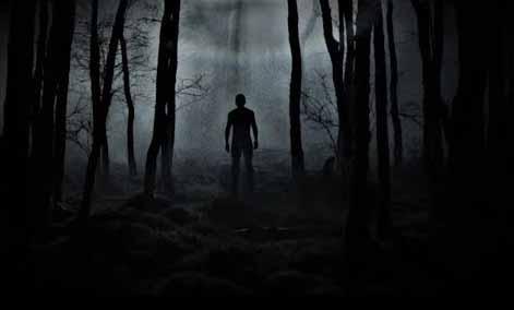 غابة هويا المسكونة : الداخل إليها مفقود!