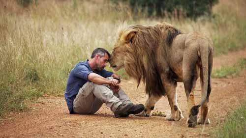 صداقات غريبة بين الحيوانات المفترسة و البشر