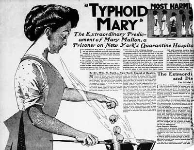 ماري تيفوئيد: طاهية الموت