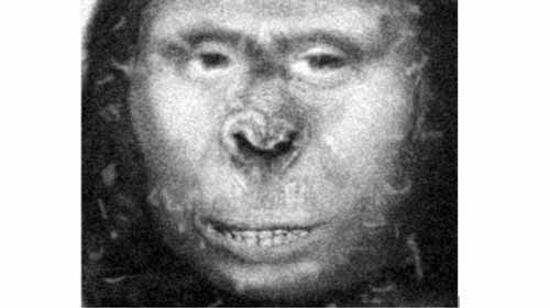 لغز زانا :الأم الوحشية لأبخازيا !